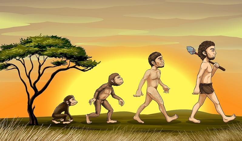 """Ne tragem din maimuţă sau din...? Despre Darwin şi darwinism """"La Ordinea Zilei"""""""