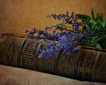 Jurnal de Rugăciune pentru traducerea Bibliei în toate limbile