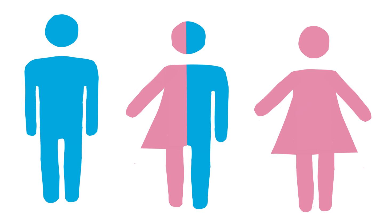 Suedia: profesor universitar investigat pentru că a spus studenţilor că  bărbaţii sunt diferiți biologic față de femei