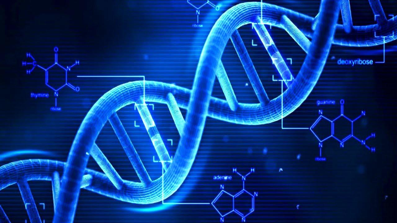 Descoperire ştiinţifică uimitoare: Toţi oamenii care trăiesc sunt descendenţi ai unui singur cuplu