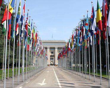 Declarația Universală și denaturarea Drepturilor Omului