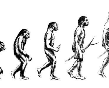 Peste 1.000 de oameni de ştiinţă au semnat o scrisoare publică prin care se dezic de teoria evoluţiei