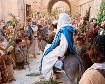 VIOREL IUGA Floriile ne amintesc că Domnul Isus este Împărat