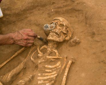 Testele ADN indică o descendență europeană a filistenilor antici şi imigraţia lor în Orientul Mijlociu